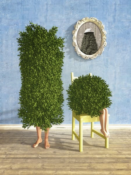Family Tree | Cynthia Decker