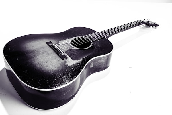 489.1834 Gibson J45 In Black and White