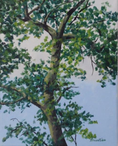 Backyard Tree Art | East End Arts