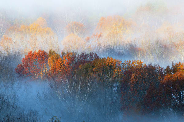 Tn  Autumn Morning Photography Art | templeimagery