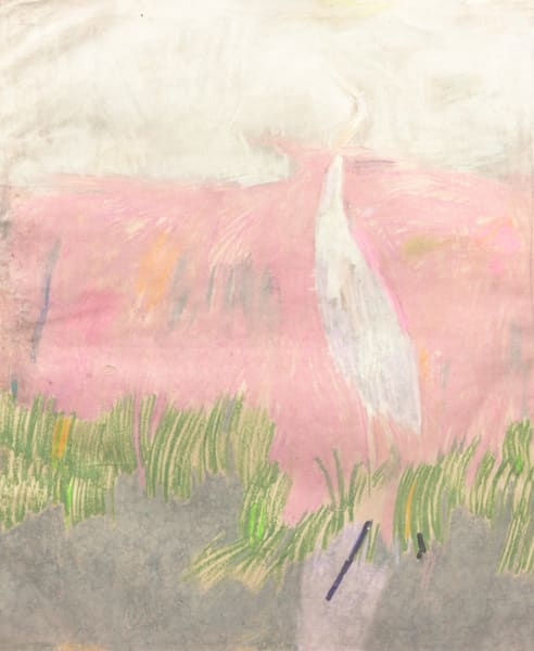 Cornwall Heron