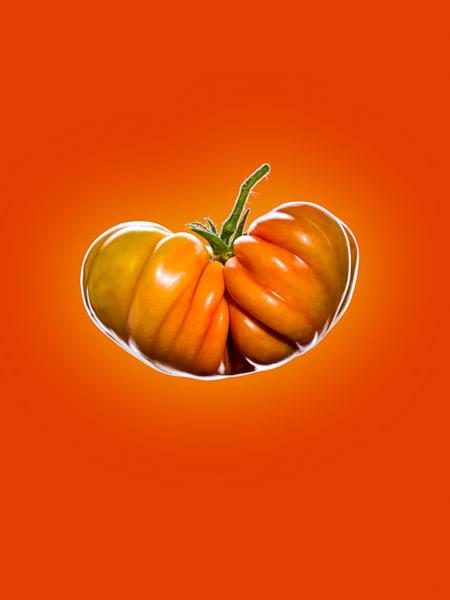Tomato Back