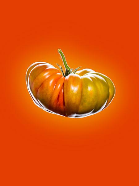 Tomato Front