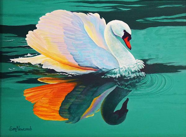 Broadmoore Swans