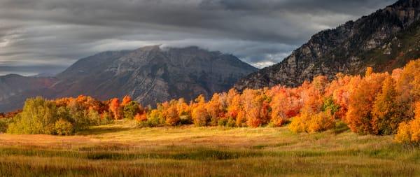cascade meadows golden fall panorama