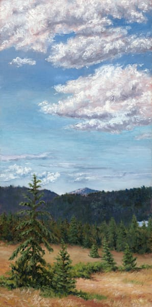 Lawrence Bahrych - The Meadow Shaw Island WA