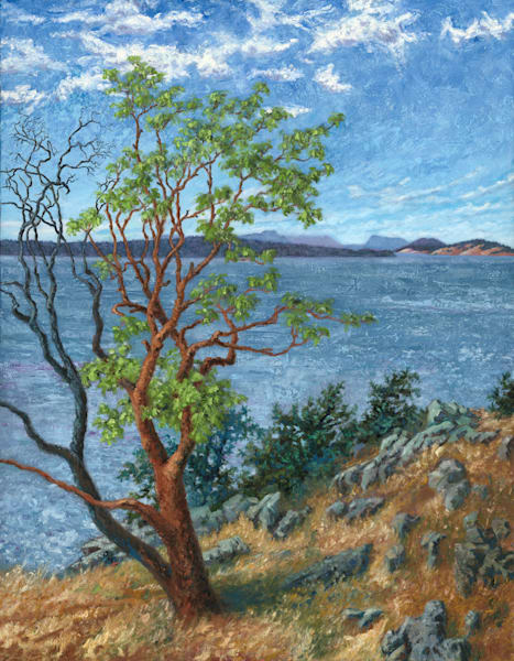 Lawrence Bahrych - View from Neck Point Shaw Island