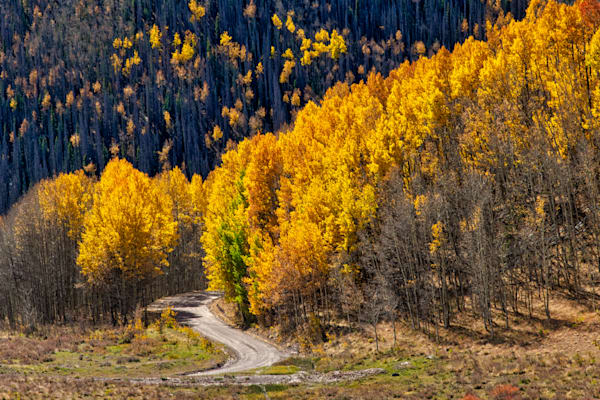 Aspen drive - Colorado photography prints