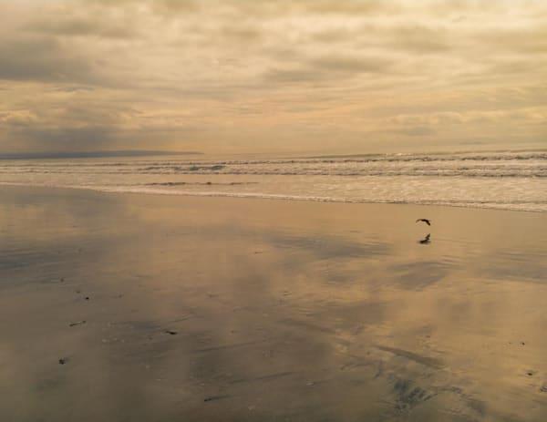 Water World, wet beach - shop fine-art notecards   Closer Views