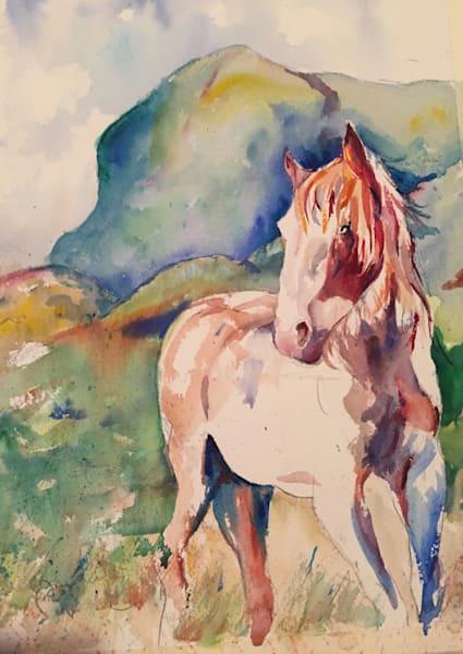 Wild Pony Art | Patrick Dominguez Art