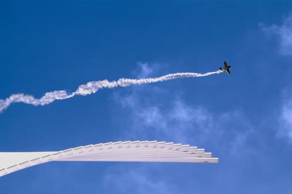 Smoking Wing Art | Mark Stall IMAGES