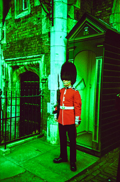 Palace Guard In Green