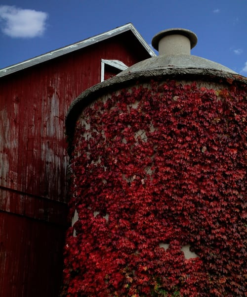 Red Silo Art | Mark Stall IMAGES