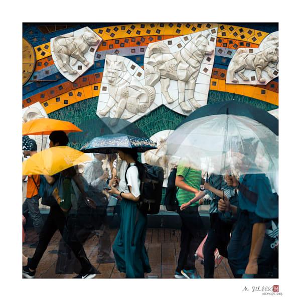 Hachikou Story  Photography Art   Matej Silecky