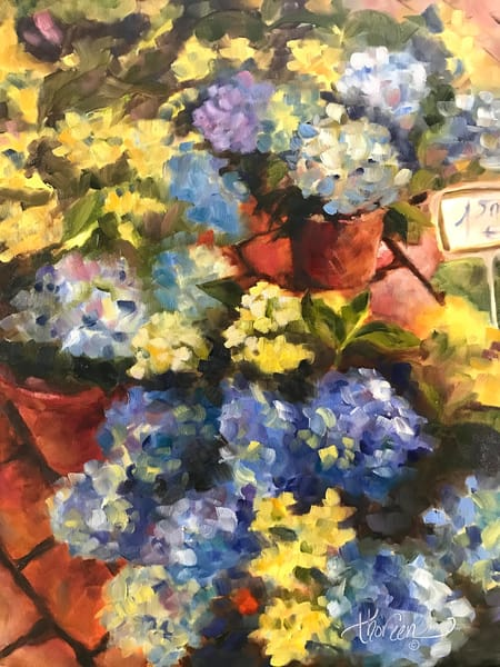 Hydrangeas in the Market