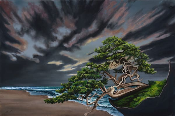 Bonsai On The Beach Art | MMG Art Studio | Fine Art Colorado Gallery