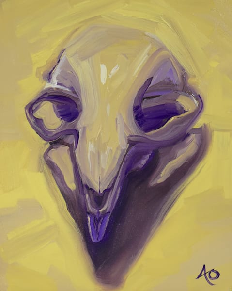 0041 Beaver Skull 2 Art | Amy O'Hearn Art