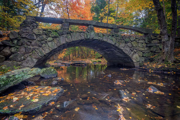 October Day in Vaughan Woods | Shop Photography by Rick Berk