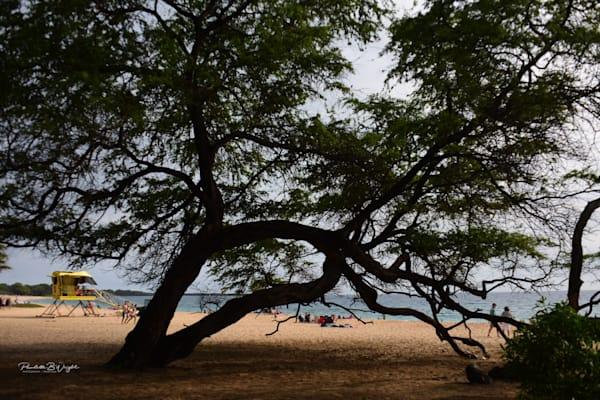 Big Beach Afternoon