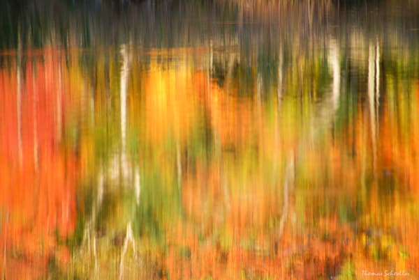 Autumn Impressions | Natures Brushstrokes semi-abstract fine art photography | Wall Decor Prints