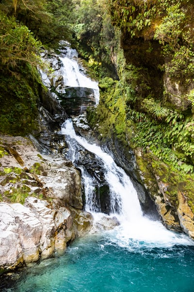 Waterfall , new, zealand, nature, forest
