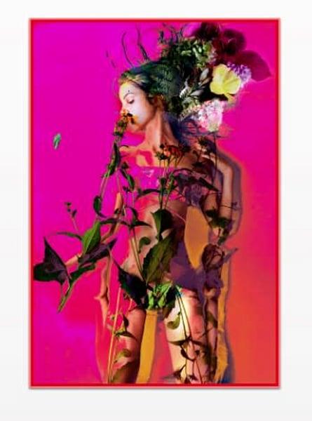 Yesterday's Transformation Is Tomorrow's Ego Trip Photography Art | Meredith Ochoa