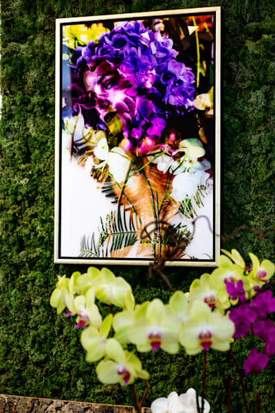 In Bloom Photography Art | Meredith Ochoa