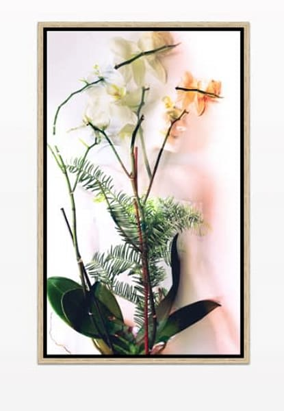 Plant Body Photography Art | Meredith Ochoa