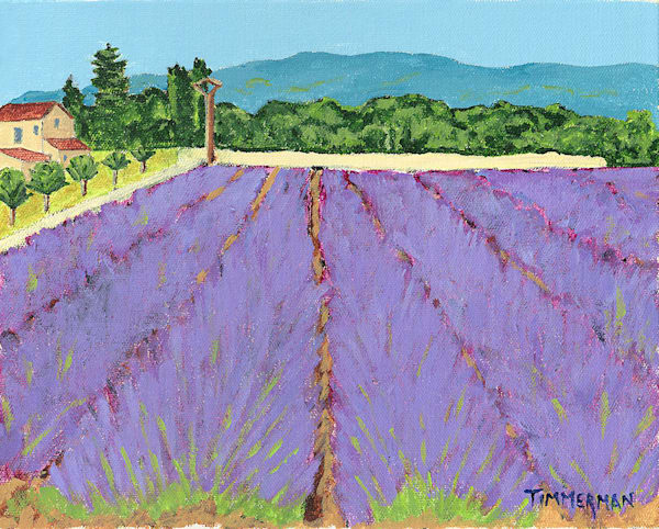 """French Lavender Field"" fine art print by Barb Timmerman."
