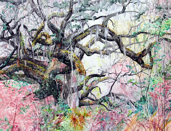 Edge Of The Swamp Art | David Beale