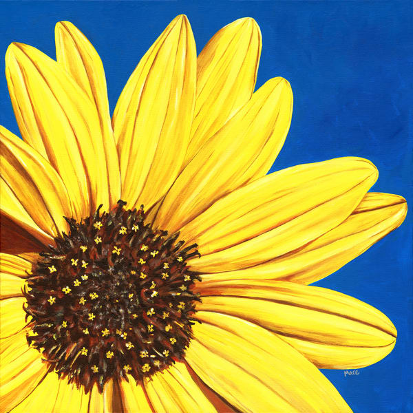 "Acrylic painting by Mary Anne Hjelmfelt ""Peeking Sunflower"" - close-up yellow petals on a blue background."