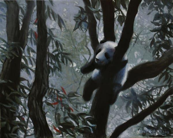 Panda in the Mist