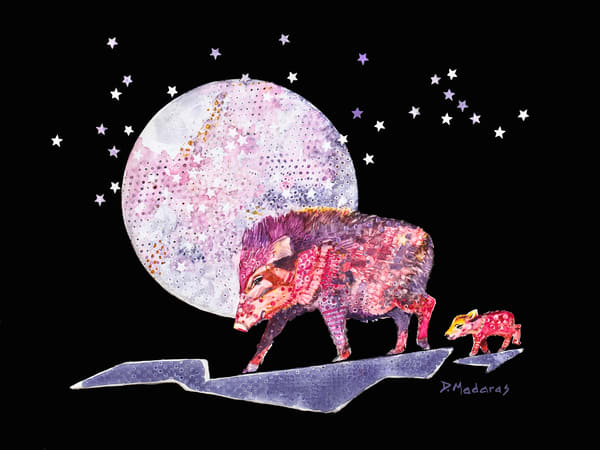 Javelina Spirit Animals by Diana Madaras