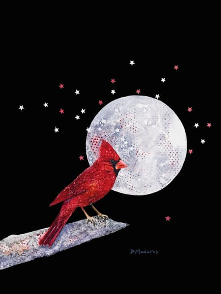 Red Cardinal Bird by Diana Madaras