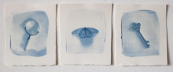 Cyanotypes   Limited Edition Prints