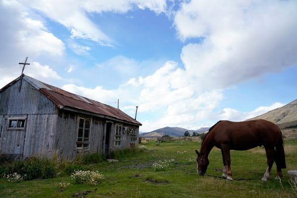 Horse,Gaucho Hut,Argentina Andes