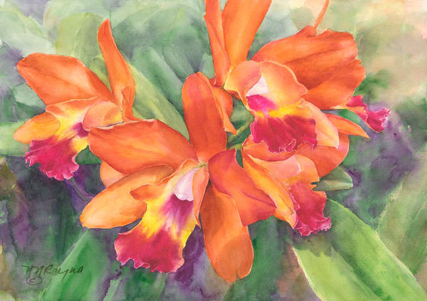 Orchids Art and Paintings for Sale