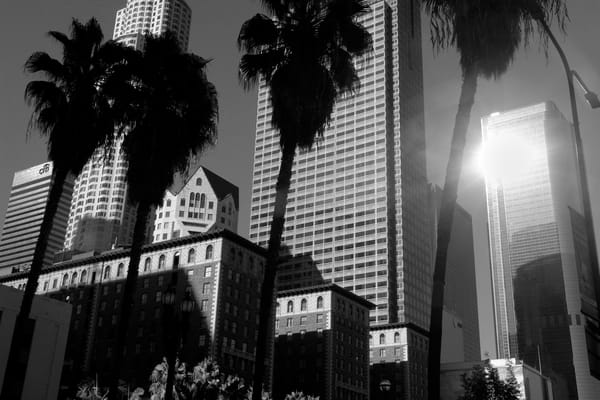 Downtown Glare Photography Art   Peter Welch