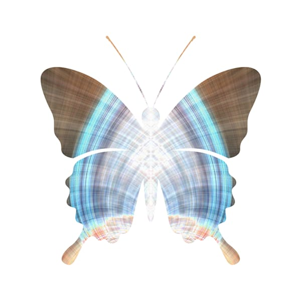 Abstract Butterfly Seven