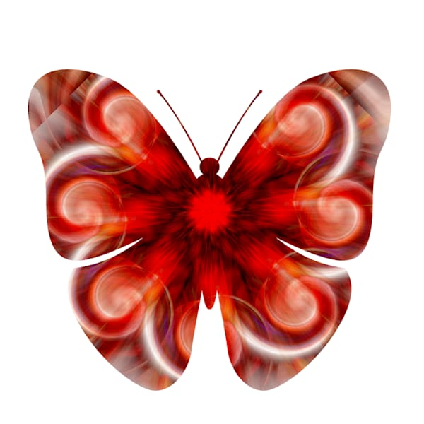 Abstract Butterfly Four