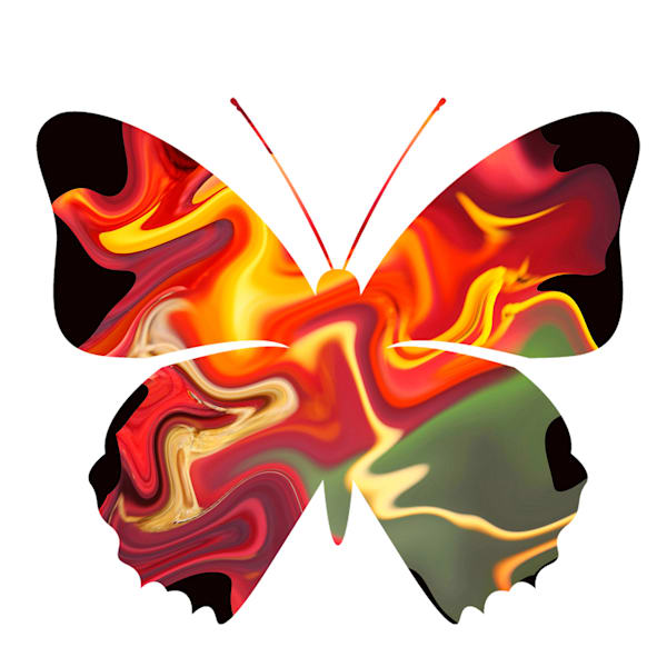 Abstract Butterfly Three