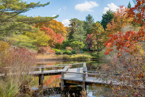 Mytoi Fall Walkway Overlook Photography Art | Michael Blanchard Inspirational Photography - Crossroads Gallery