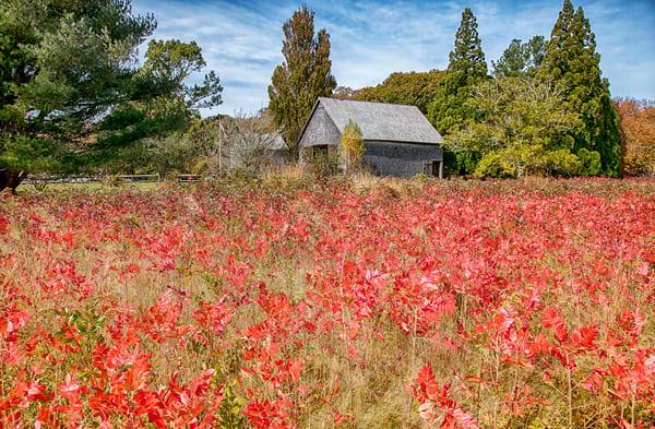 Polly Hill Fall Barn Art | Michael Blanchard Inspirational Photography - Crossroads Gallery