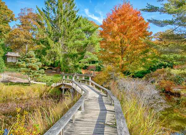 Mytoi Fall Walkway Photography Art | Michael Blanchard Inspirational Photography - Crossroads Gallery