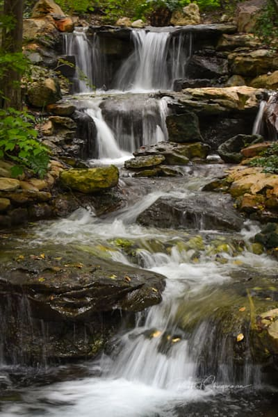 Waterfall Garden | Shop Prints | Robert Shugarman Photography