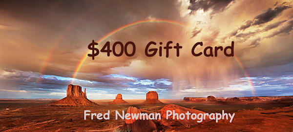 $400 Gift Card | frednewmanphotography