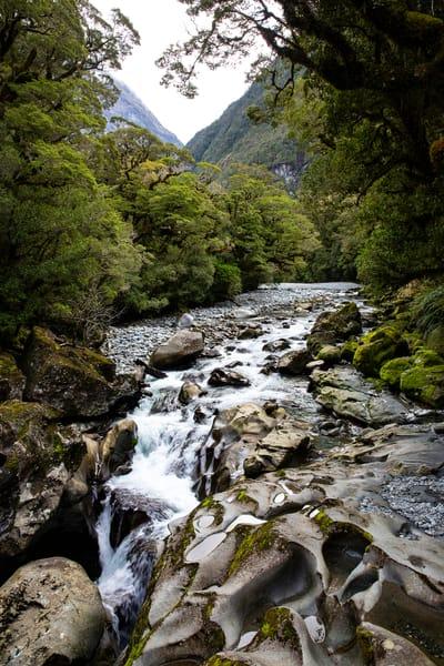 Fiordland River Photography Art | Kristofer Reynolds Photography