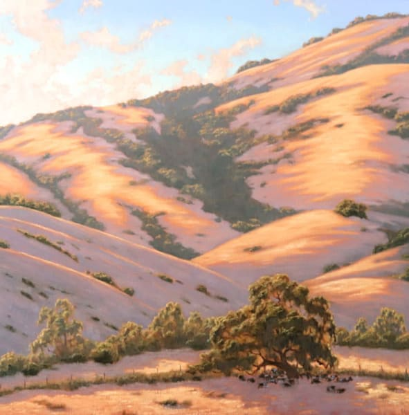 Golden Hills, Oaks and Cattle painting