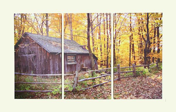 """""""Rural Rustic"""" - XL Triptych"""