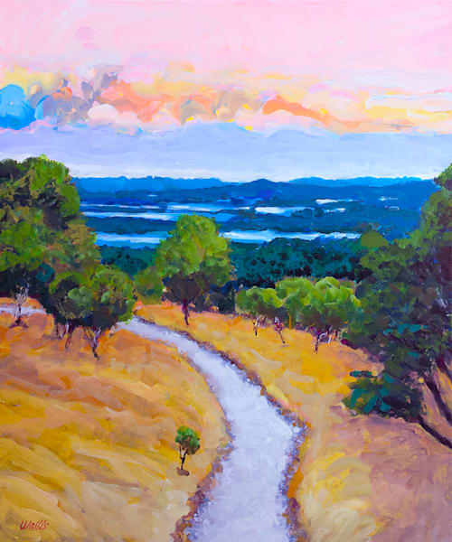 Texas Hill Country Vista  Art | Charles Wallis